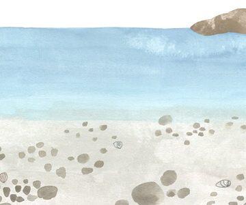Roberta Bridda ilustra 'Nuestro tesoro'