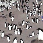 """Viaje a la """"Antártida"""" con Raquel Martín"""